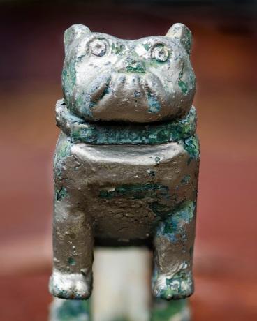 141f6-bulldog1