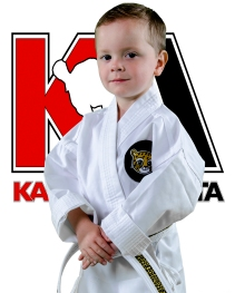 KA Background 1 8x10