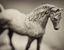 horsehoodornament