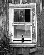 window1-8x10.1